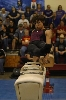 3rd District Gymnastics Meet Photo