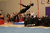 13th Texas State Gymnastics Championships Photo