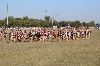 19th State Cross Country Meet Photo