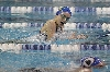 26th District Swim Meet Photo