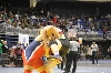 5th State Wrestling Meet Photo