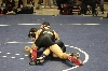 15th State Wrestling Meet Photo