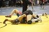 29th State Wrestling Meet Photo